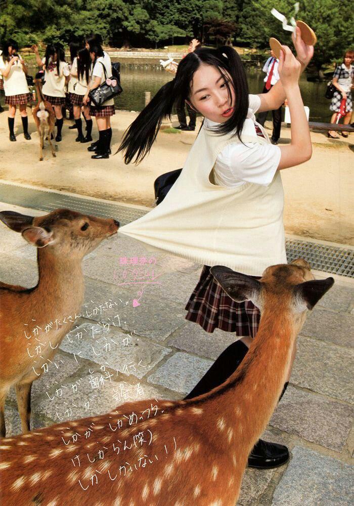Забавные животные. часть 126 ( 53 фото )