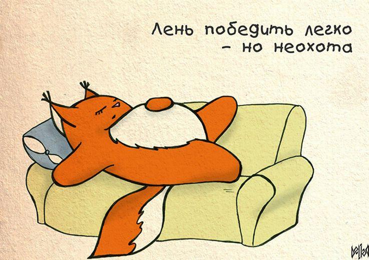 Картинки по запросу смешные картинки про лень