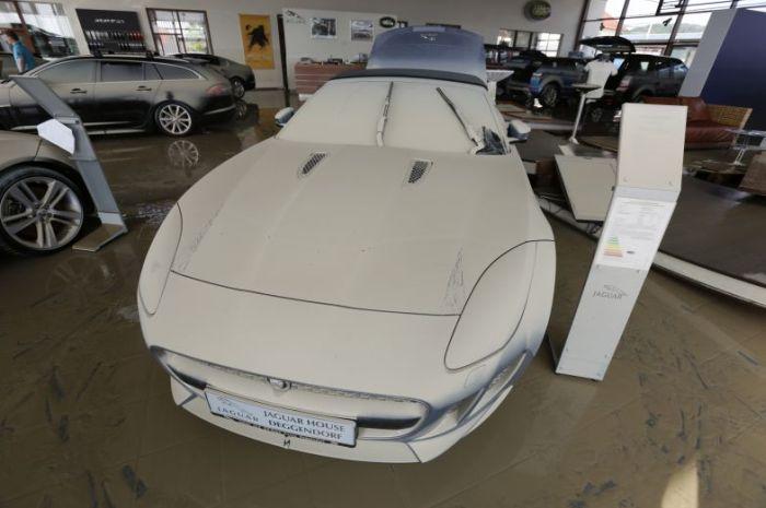 Затопленные автомобили из Европы (35 фото)
