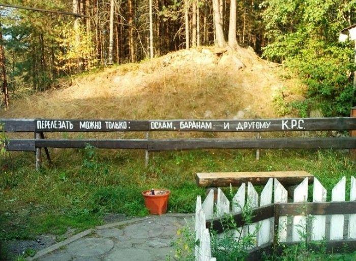 Смешные надписи (24 фото)