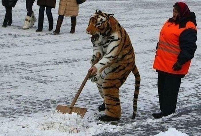 Такое бывает только в России. Часть 11 (43 фото)