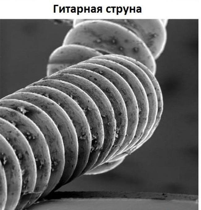 Обычные вещи под микроскопом (11 фото)