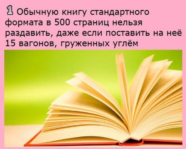 fact_01.jpg