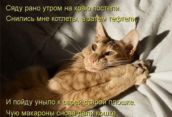 cm_20130517_02753_002.jpg