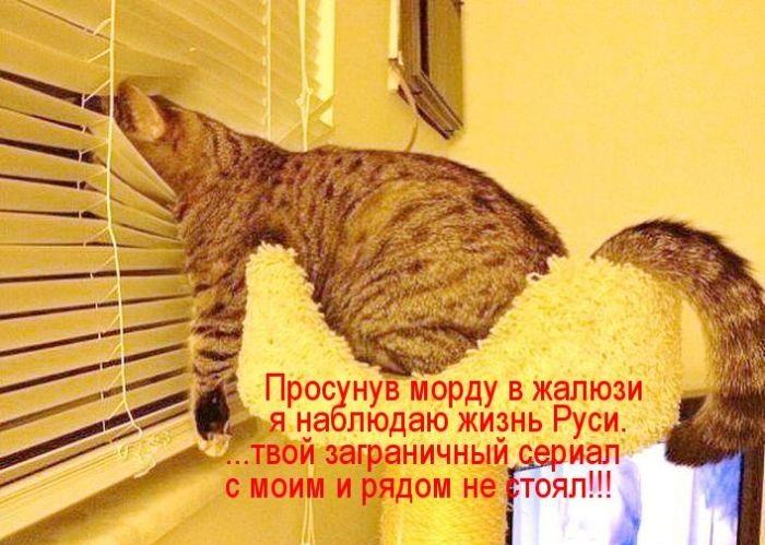cm_20130816_03083_037.jpg