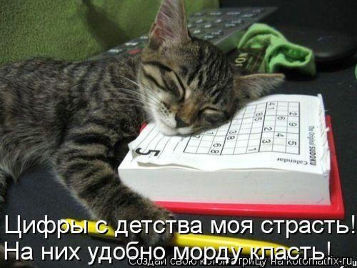 cm_20130524_02776_006.jpg
