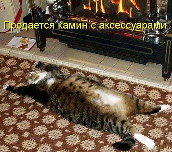 cm_20130628_02902_037.jpg