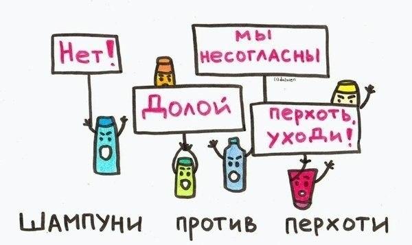 xnh_DocKZBc.jpg