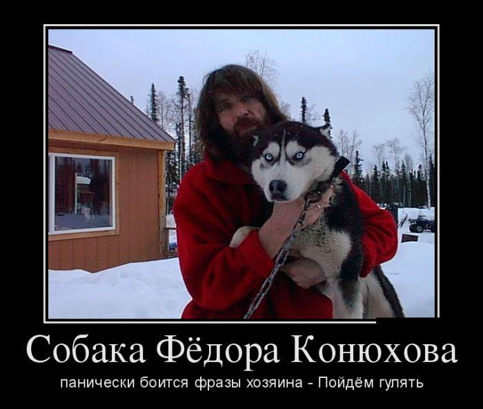1439283085_demotivatory_01.jpg