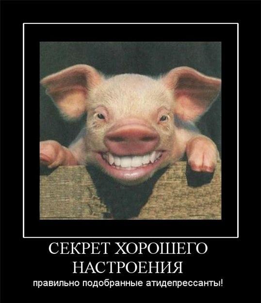Прикольная картинка человек смеется